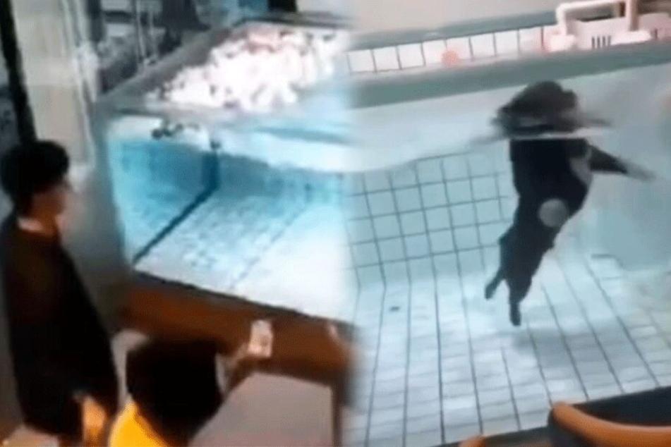 Besitzerin filmt, wie ihr Hund in Pool um sein Leben kämpft und ertrinkt