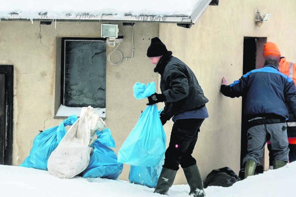 Die Kadaver der kleineren Tiere wurden für den Abtransport in Müllsäcke verpackt.