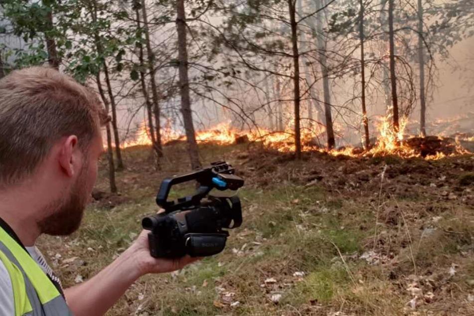 Ein Waldbrand ist im brandenburgischen Glindow ausgebrochen.