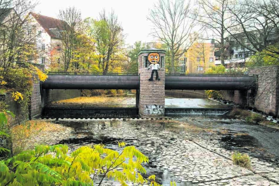 Das Rathaus hat zu wenig Personal, um Schmierereien wie an der Georgbrücke zu beseitigen.