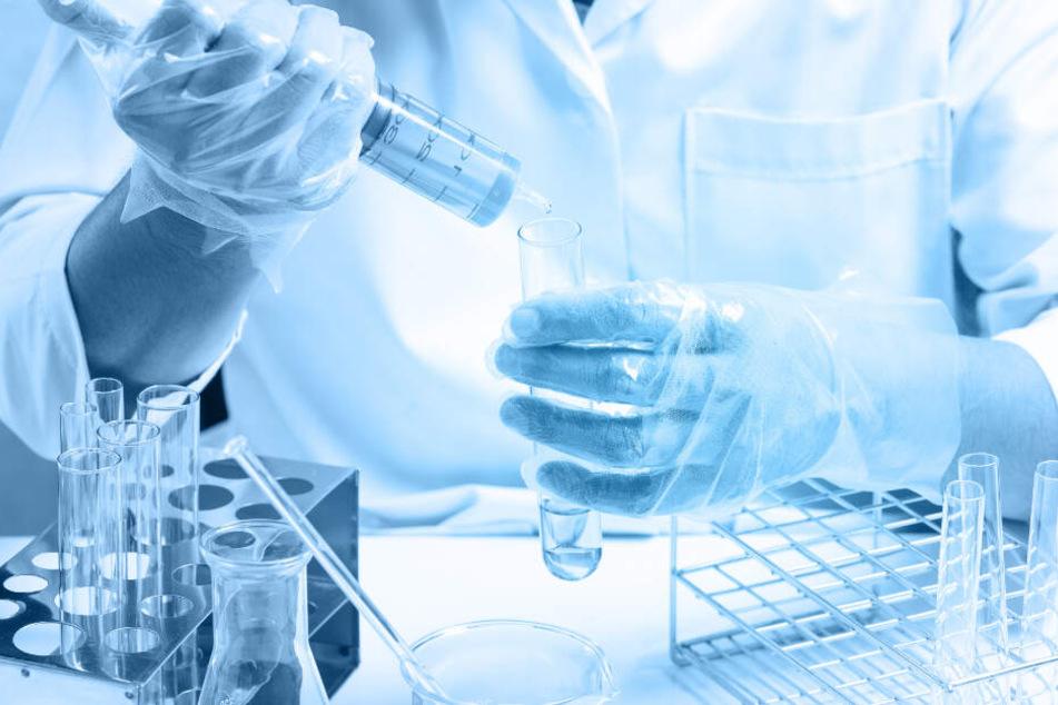 Versuche an Probanden sollen zeigen, ob der Virus auch bei Menschen Krebszellen tötet. (Symbolbild)
