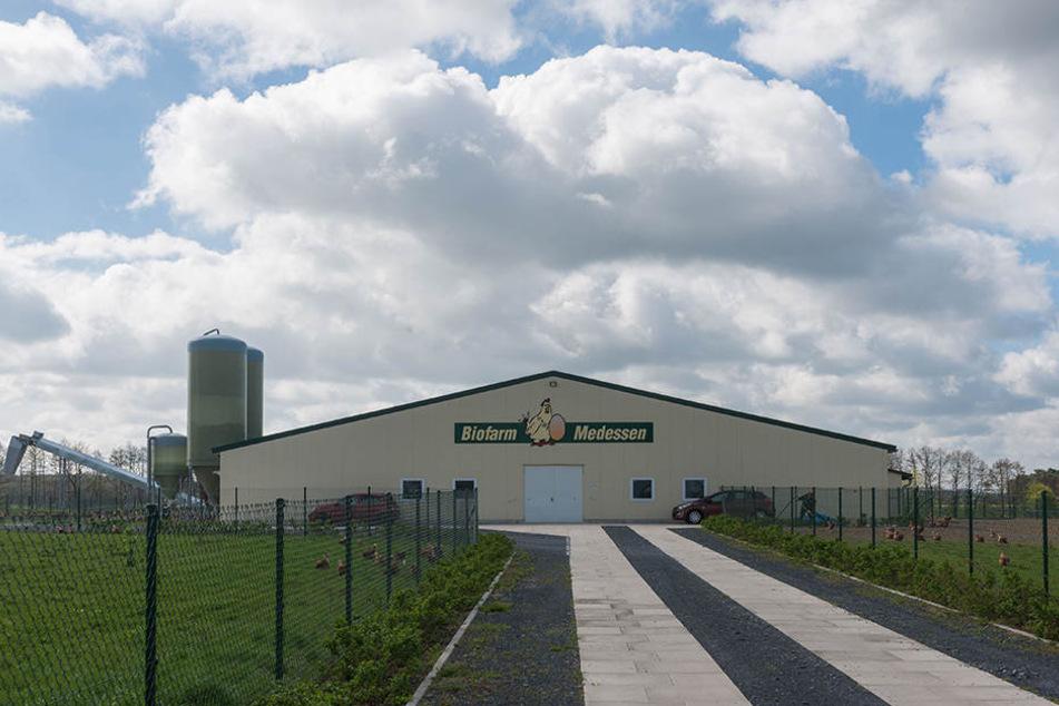 Die Biofarm Medessen wurde vor zwei Jahren in Betrieb genommen. Sie gehört einem Sohn von Christian Riedel.