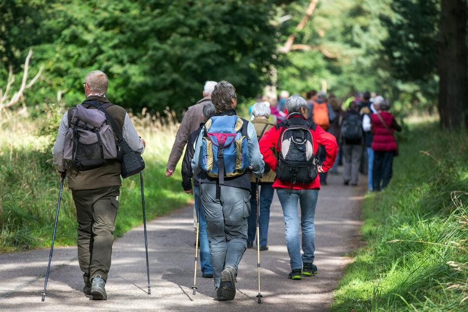 Wanderer sind in einer Gruppe unterwegs. (Symbolbild)