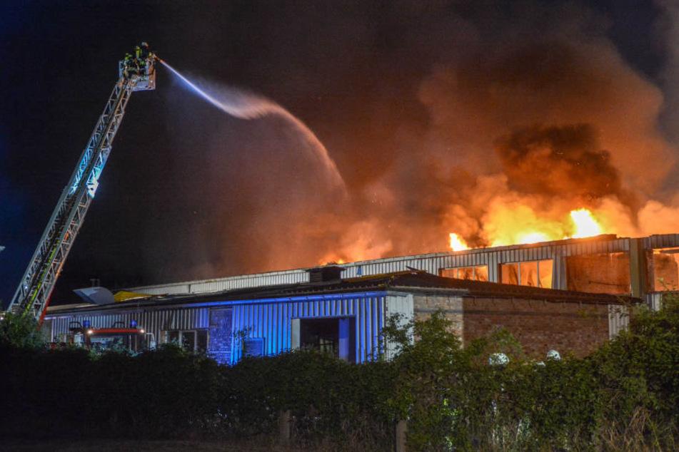 10 Brände in 7 Tagen: Feuerteufel zündet erneut leerstehende Lagerhalle an