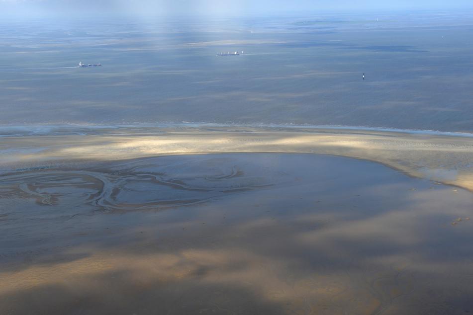 Das Bundesamt für Seeschifffahrt und Hydrographie (BSH) startet die jährliche Bestandsaufnahme der Nordsee.