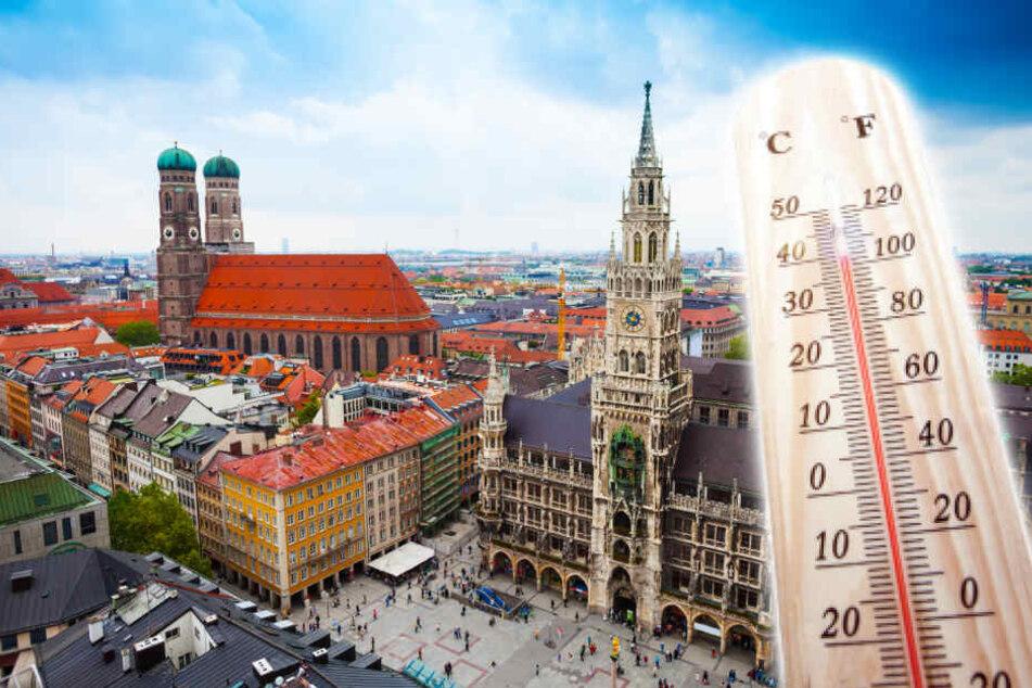 Forscher: München bald so warm wie Mailand!