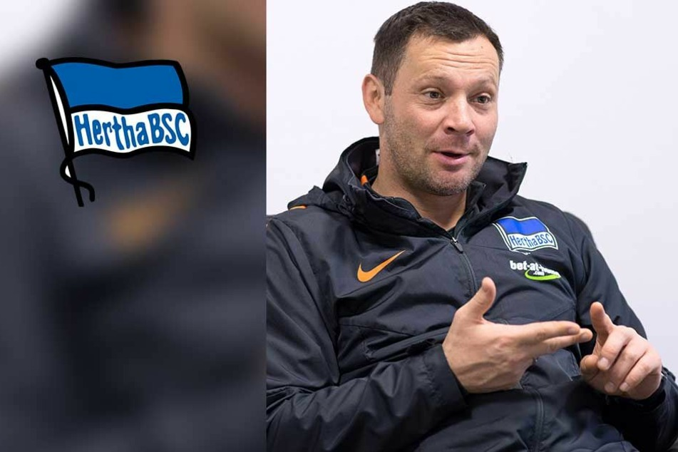Bundesliga-Coach verrät, wer wirklich über Trainer-Entlassungen entscheidet