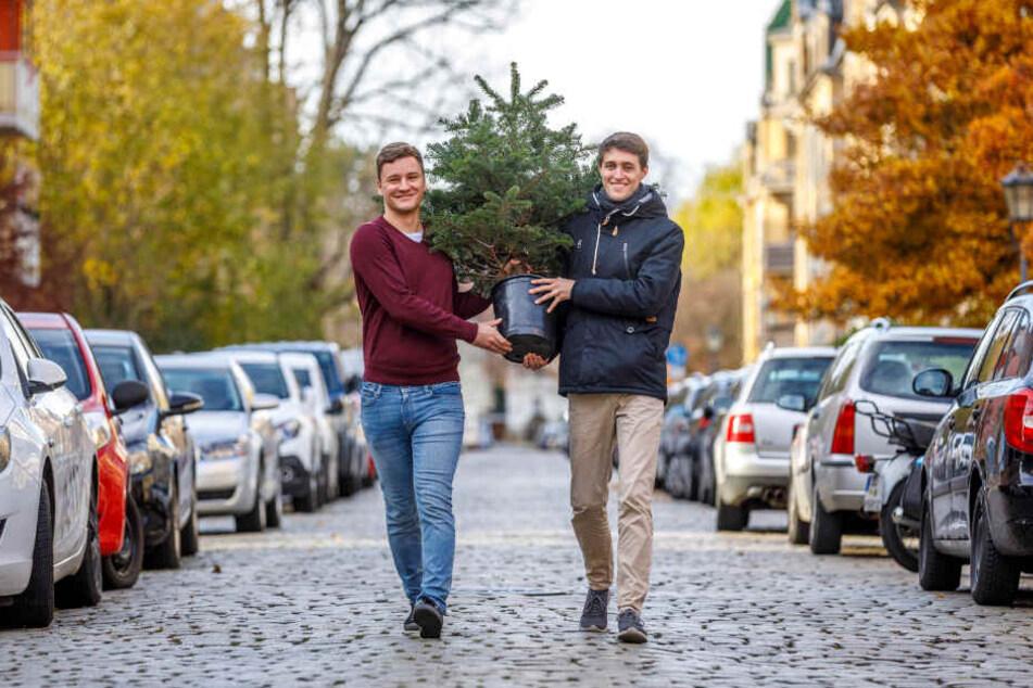 Mieten Sie doch mal 'nen Weihnachtsbaum! Gründer Moritz Kormann (25, r.) liefert sogar selbst aus, Patrick Schroll (26) und andere Freunde helfen dabei.