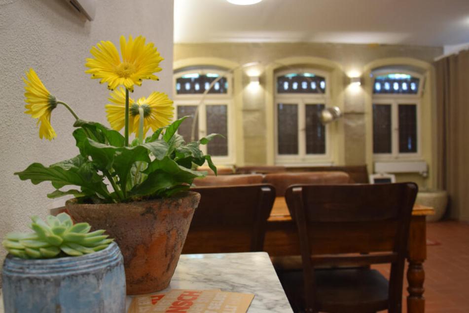 Eine Pflanze im Vordergrund, Tische stehen im Hoffnungshaus.