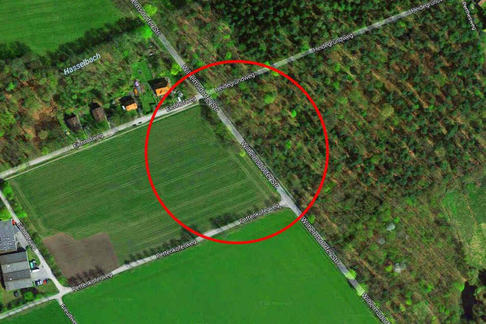 In diesem Bereich verhinderten mehrere Hindernisse die Weiterfahrt.