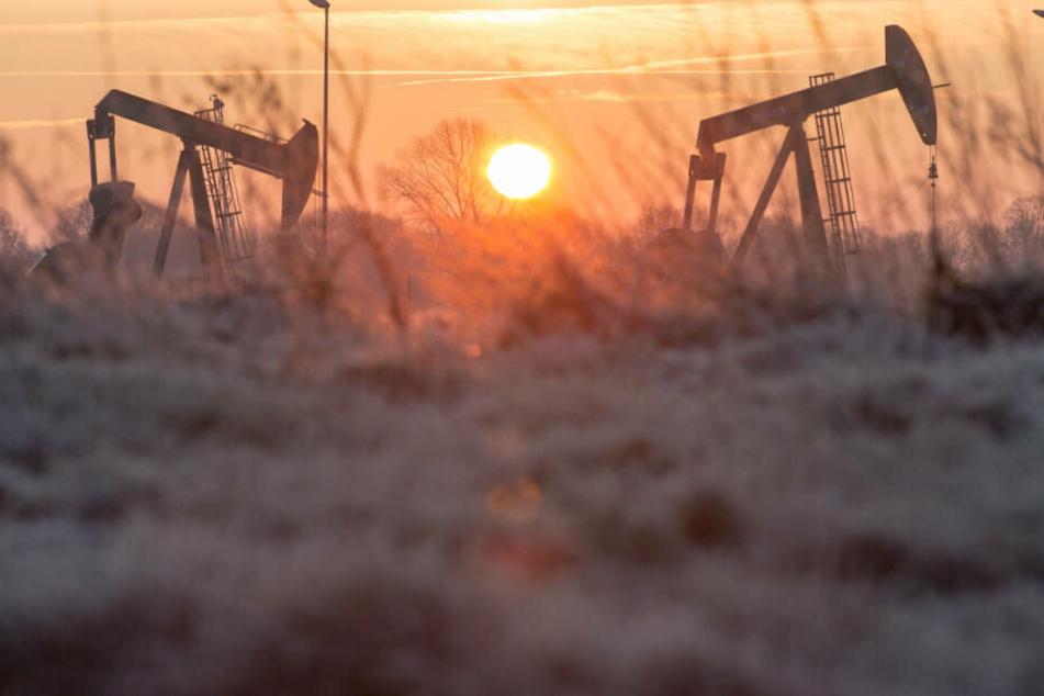 Pferdekopf-Pumpen im niedersächsischen Emlichheim: Auch in Deutschland wird Erdöl gefördert.