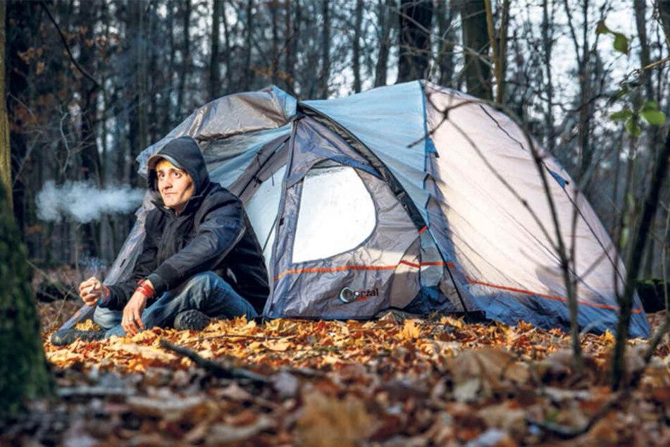 Nachts beim Zelten in der Dresdner Heide träumt Flo von einer richtigen Wohnung. Nur manchmal stören ihn die Wildschweine dabei.