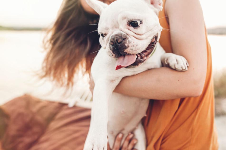 Schmerzlicher Verlust: Die traurige Hundebesitzerin überlegt nun, gegen den Pflegesalon zu klagen. (Symbolbild)