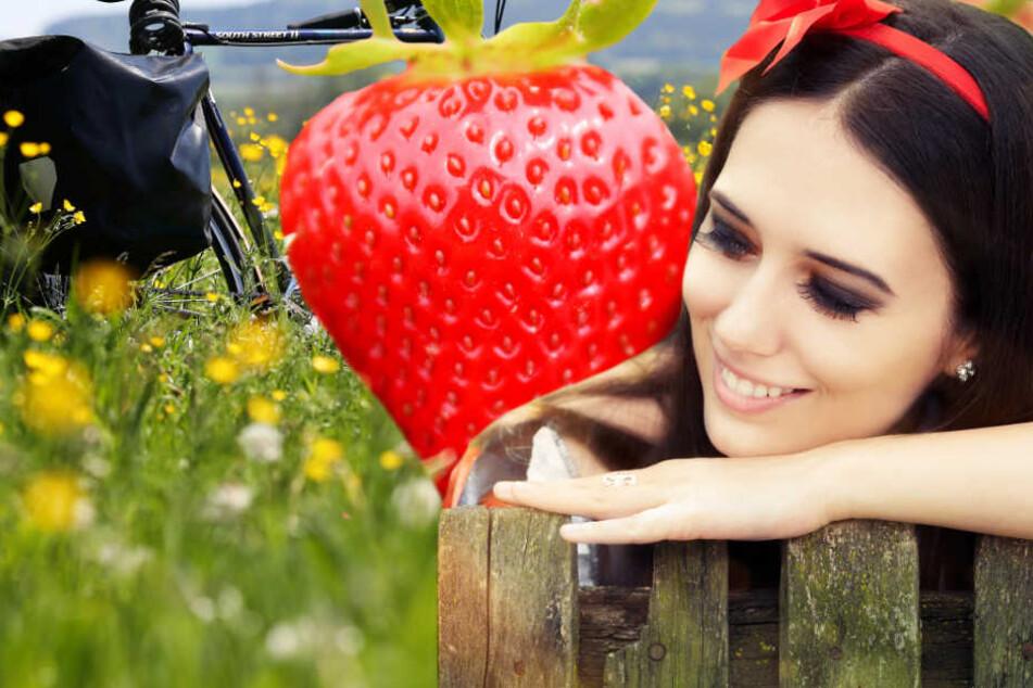 Erdbeerfest, Fahrradtag oder Märchen-Zauber? Die Top-Events am Sonntag