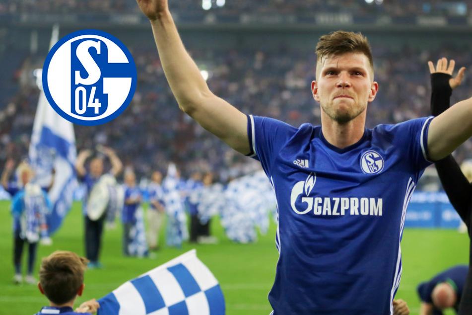 Schalke macht Transferkracher perfekt: Huntelaar kehrt zu den Knappen zurück!