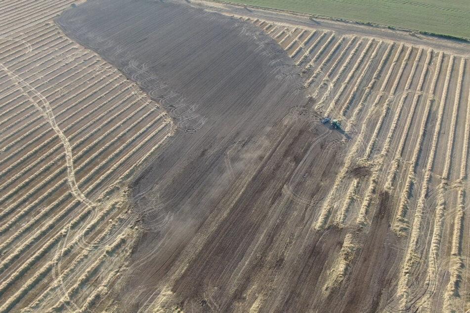 Bei dem Brand sind etwa drei Hektar Land zerstört worden.