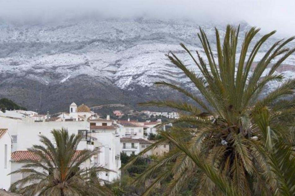 Schnee und Eis auch in Südspanien: Die Region um Valencia ist der größte Obst- und Gemüselieferant für Europa.