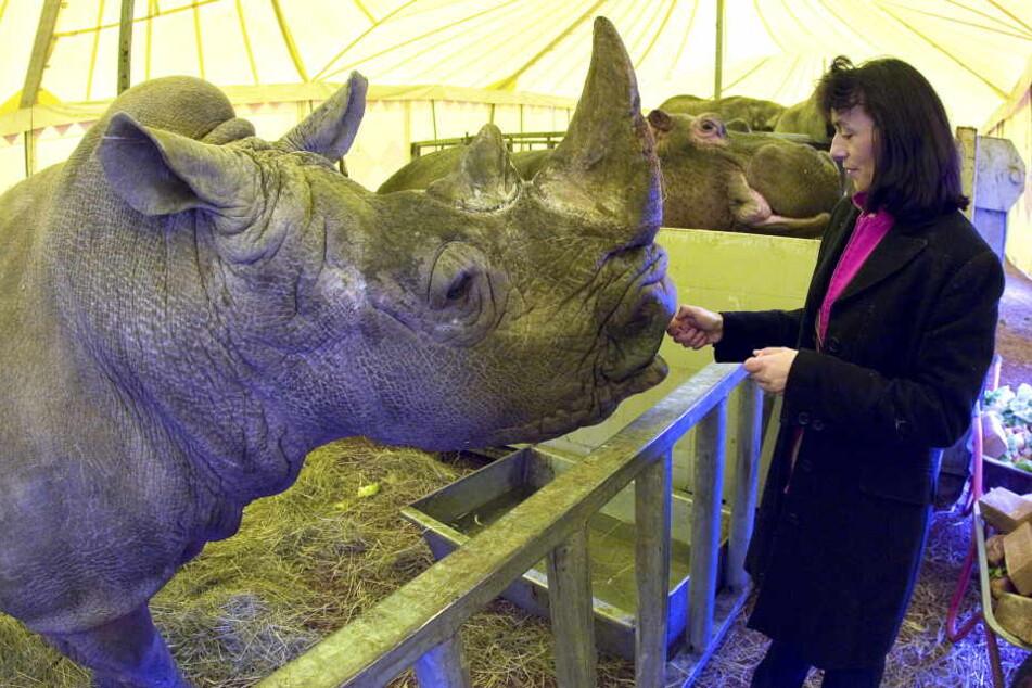 In Zwickau wird es im Zirkus weiterhin Wildtiere geben.
