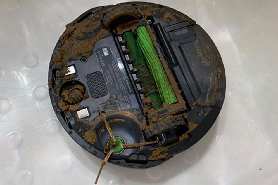 """Der Staubsaugerroboter """"Roomba"""" war völlig mit Hundekot verdreckt."""