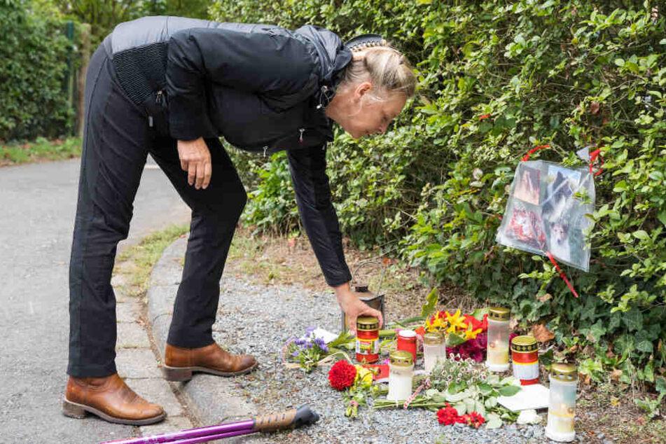 """Therapiehund """"Aiko"""" brutal niedergestochen: Hass-Kommentare fluten soziale Netzwerke"""