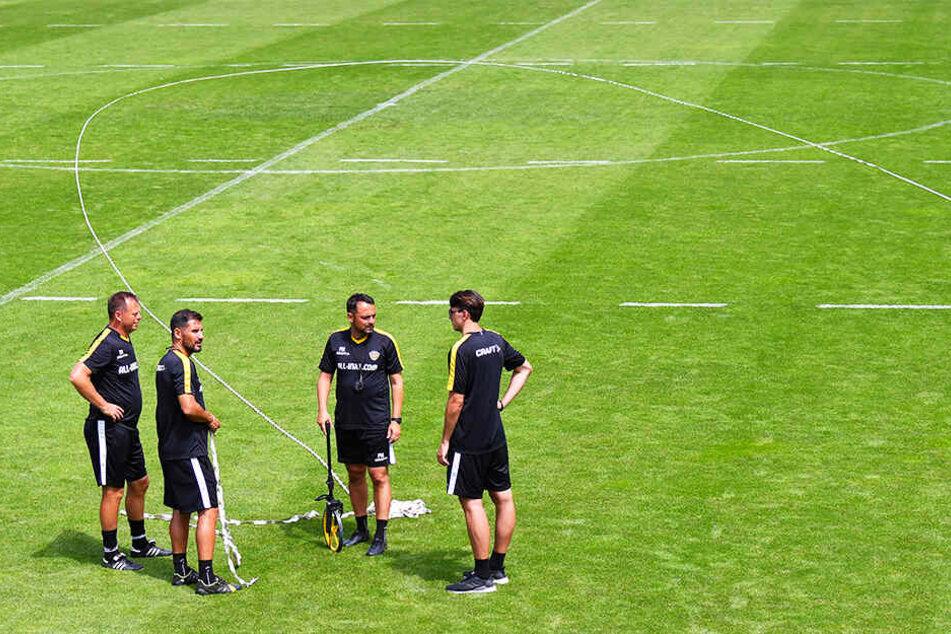 Chefcoach Cristian Fiel (2.v.l.) hat mit seinem Team das Spielfeld in Zonen unterteilt und bespricht die letzten Details der Übungseinheit. In jedem Training spielt die Taktik eine große Rolle.