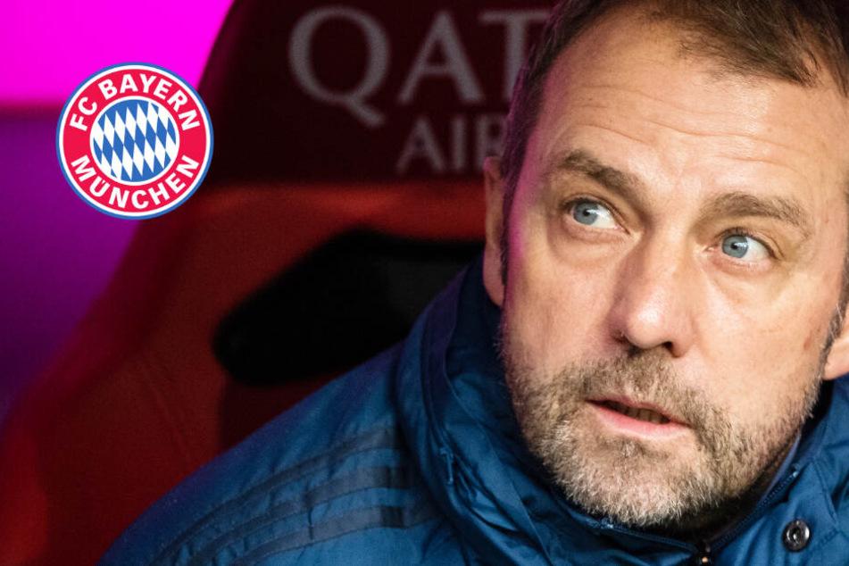 Wieder Co-Trainer des FC Bayern? Hansi Flick hat keine Lust auf seinen alten Job!
