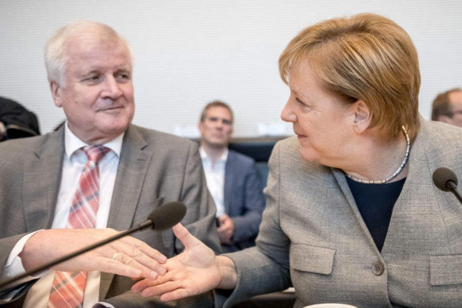 Nach dem Rückzug von Angela Merkel richten sich die Augen wieder auf Horst Seehofer.