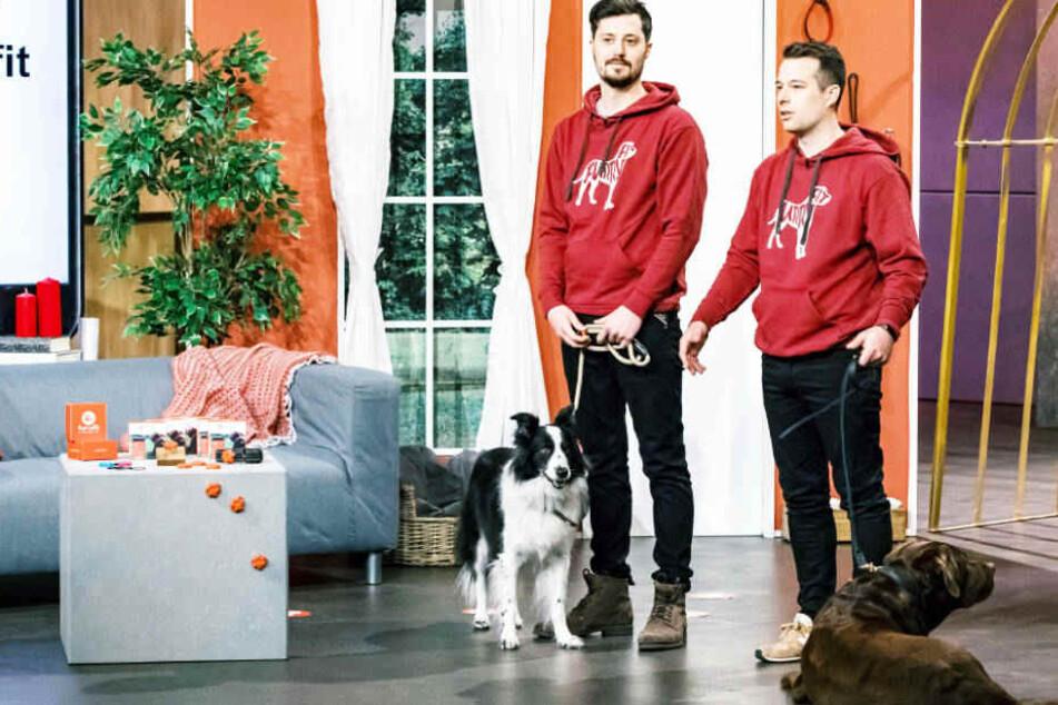 "Fitness-App für Hunde: Bekommen Bonner Brüder 200.000 Euro aus der ""Höhle der Löwen""?"