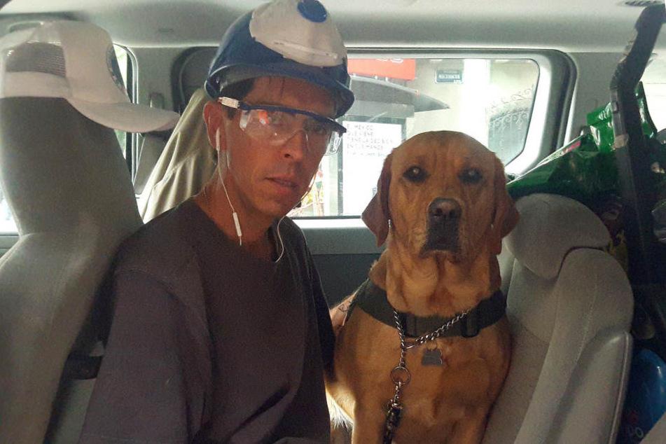 Speziell ausgebildete Hunde wie Jona, helfen bei den Rettungsarbeiten mit.