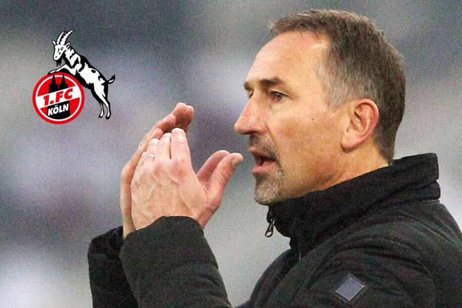 1. FC Köln zieht Reißleine: Achim Beierlorzer muss gehen