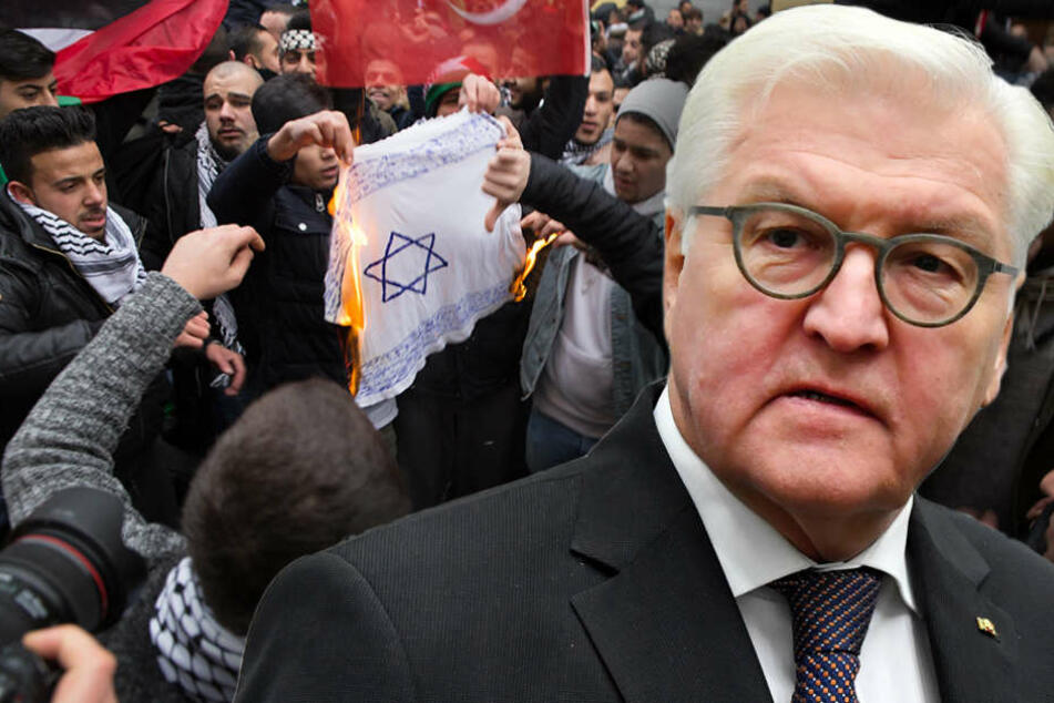 Politiker beziehen Stellung gegen Antisemitismus, Steinmeier verurteilt Flaggenverbrennung
