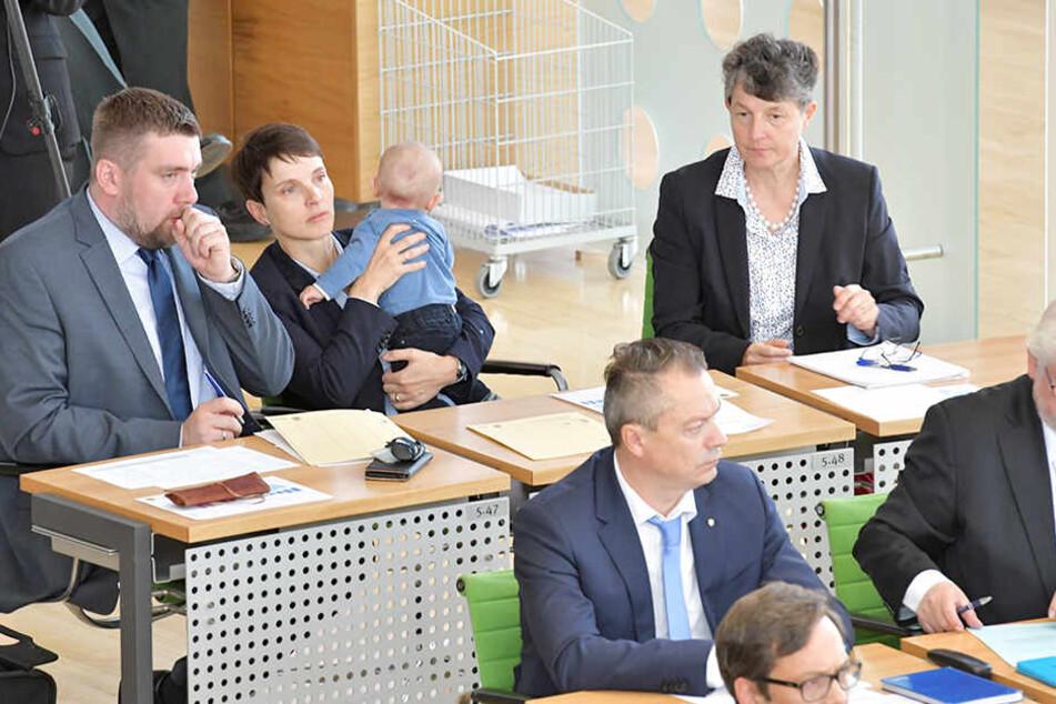 Die drei Abtrünnigen Uwe Wurlitzer, Frauke Petry (mit Sohn Ferdinand) und Kirsten Muster (hinten, v.l.n.r). saßen bei der Landtagssitzung in der letzten AfD-Reihe. Sie wurden von mehreren früheren Kollegen aber mit Handschlag begrüßt.