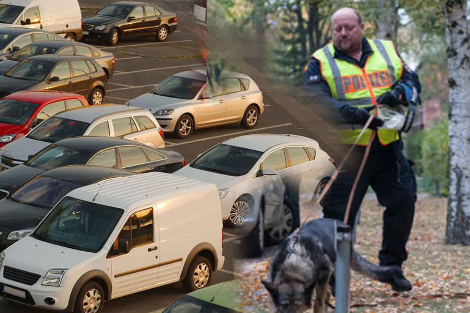 Sogar der Fährtenhund war schon auf dem Weg zum Einsatzort, um nach dem Jugen zu suchen. (Symbolbild)