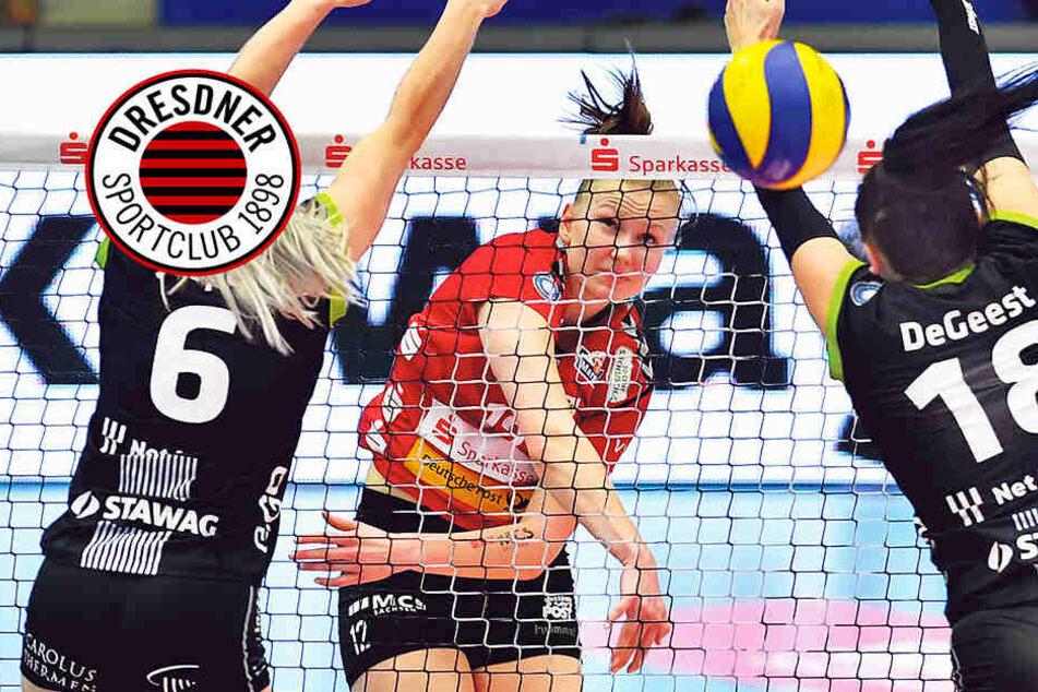 """Dresdner SC: """"Wir wollen um jeden Preis ins Halbfinale!"""""""