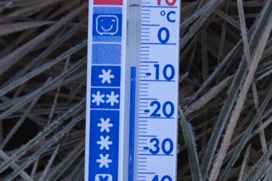 Noch am Montagmorgen waren in Kühnhaide minus 6 Grad.