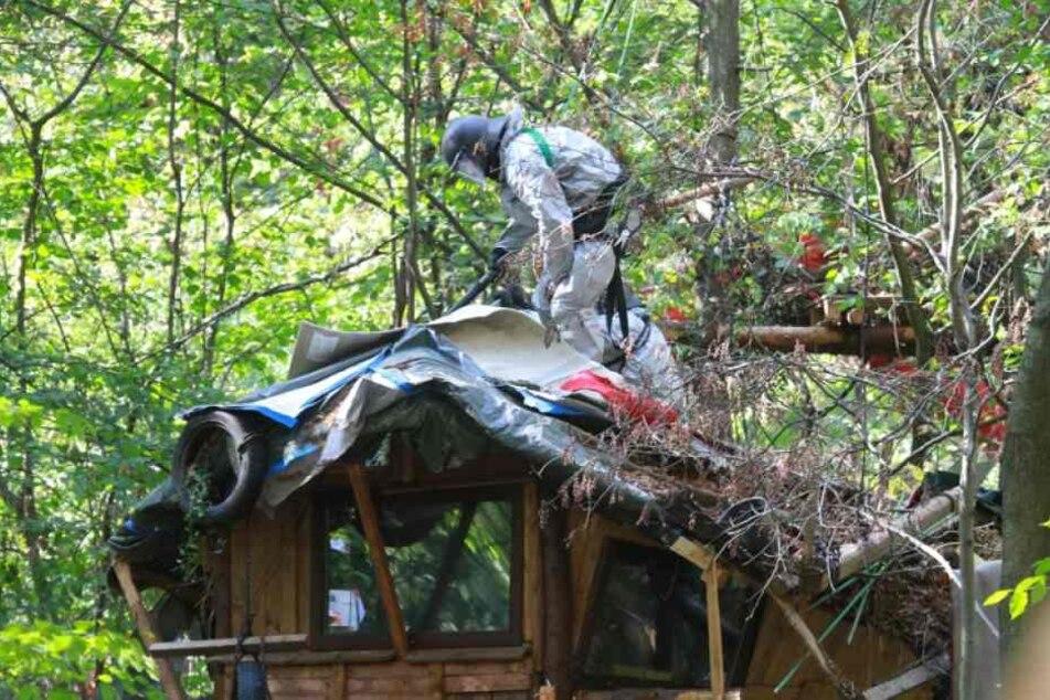 Ein Polizist steht im Hambacher Forst auf dem Dach eines von Aktivisten gebauten Hauses.