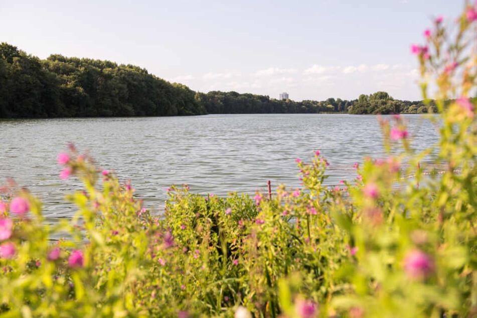 Hamburg: In diesem Hamburger See ist Baden jetzt verboten!