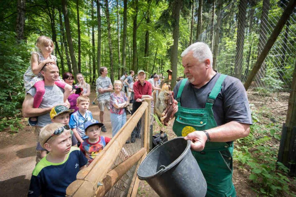 2018 war für das Wildgatter ein Rekord-Jahr. Mehr als 45000 Besucher strömten in das Areal in Oberrabenstein.