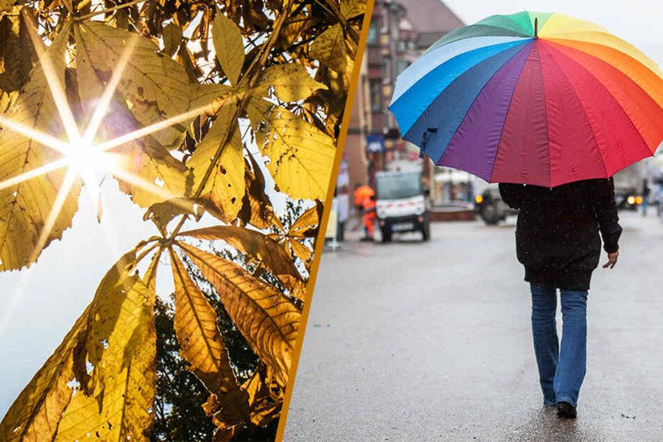Das Wochenende wird herbstlich: Stellt euch auf Sonnenschein und Regen ein!