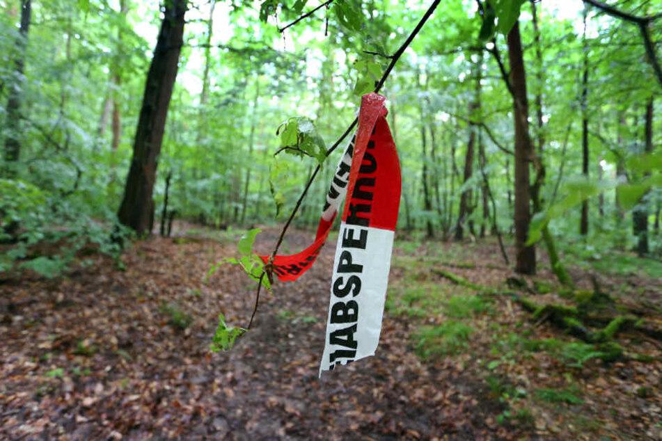 In einem Waldstück wurde der behinderte Sohn unversehrt aufgefunden.