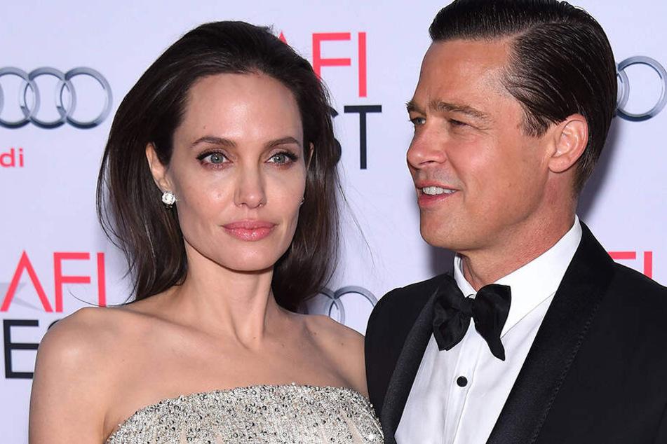 Ein Bild aus glücklichen Tagen: Angelina Jolie und Brad Pitt stecken eigentlich mitten in der Scheidung, nun will sie ihren Ex angeblich zurück.