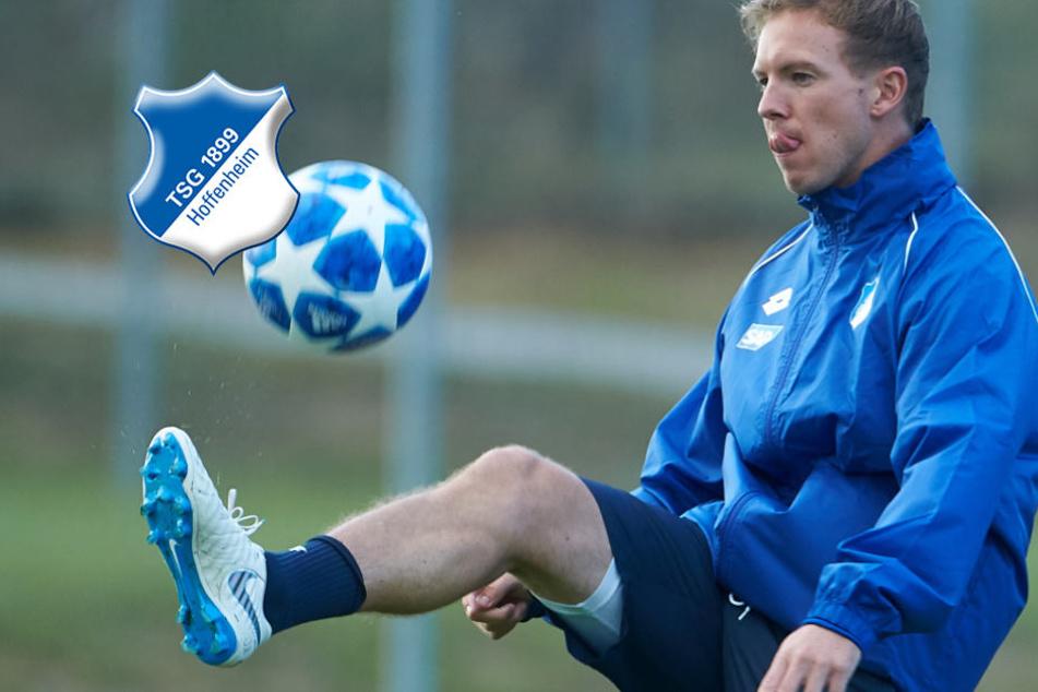 Satter Gewinn! Hoffenheim fährt Rekordergebnis ein