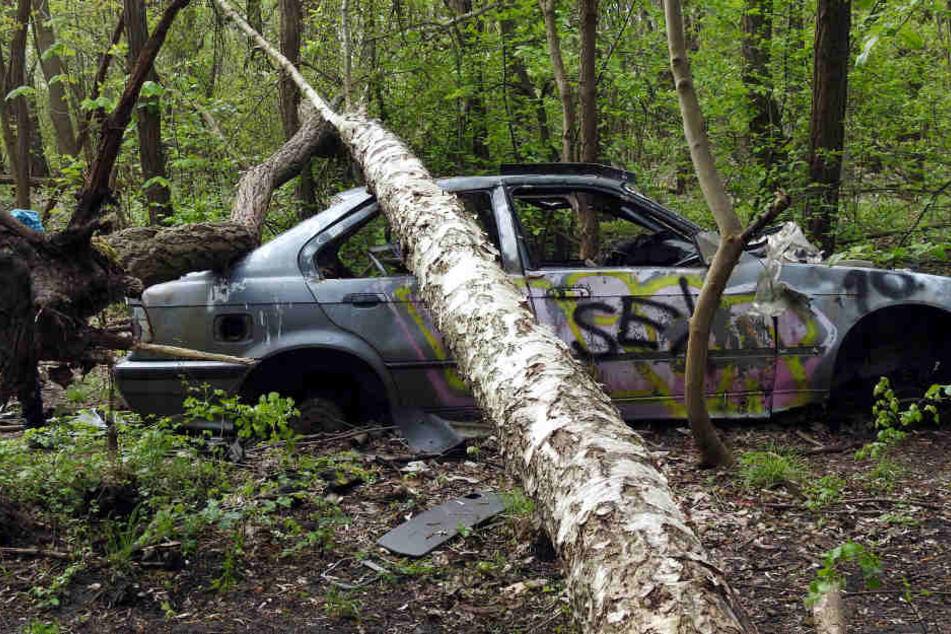 Wie kommt dieser BMW in den Wald? Und wie bringt man ihn wieder raus?