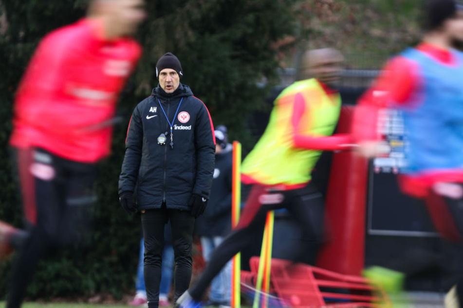 Prinzipiell machen seine Schützlinge einen positiven Eindruck auf Coach Adi Hütter.