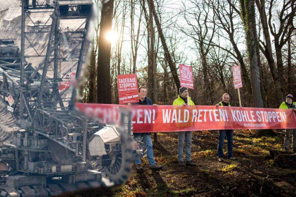 Umweltschützer protestieren gegen den Braunkohle-Tagebau und die Rodung des Hambacher Waldes.