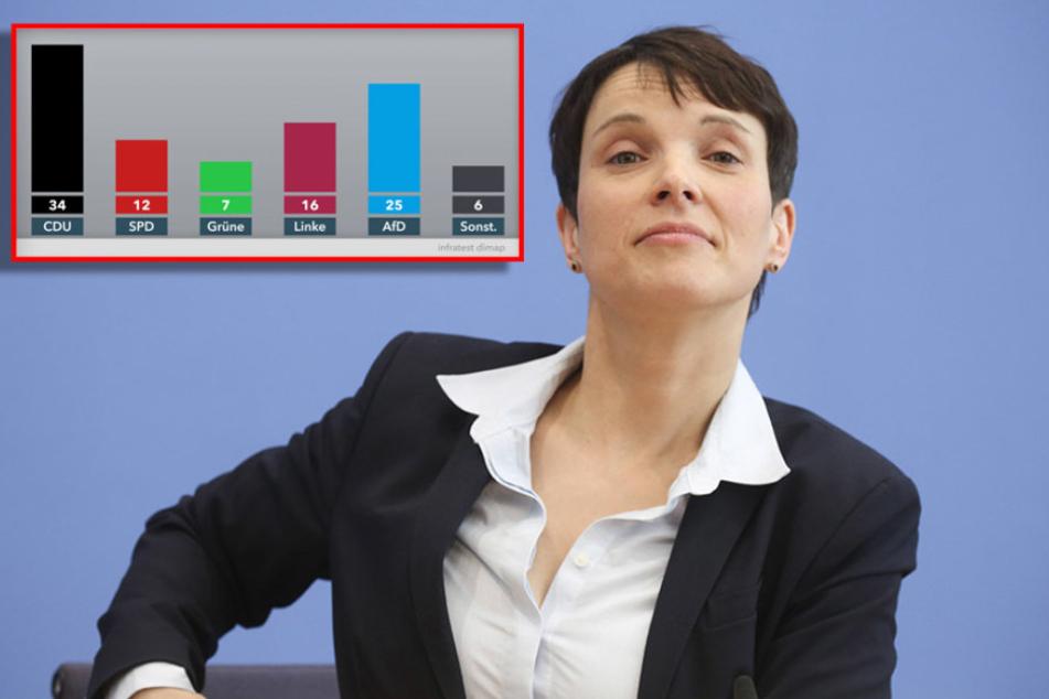Schock-Umfrage! 25 Prozent aller Sachsen würden die AfD wählen