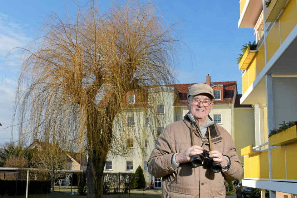 Siegfried Reimer (80) hat schon bis zu 14 Eulen gleichzeitig in der Trauerweide beobachten können.