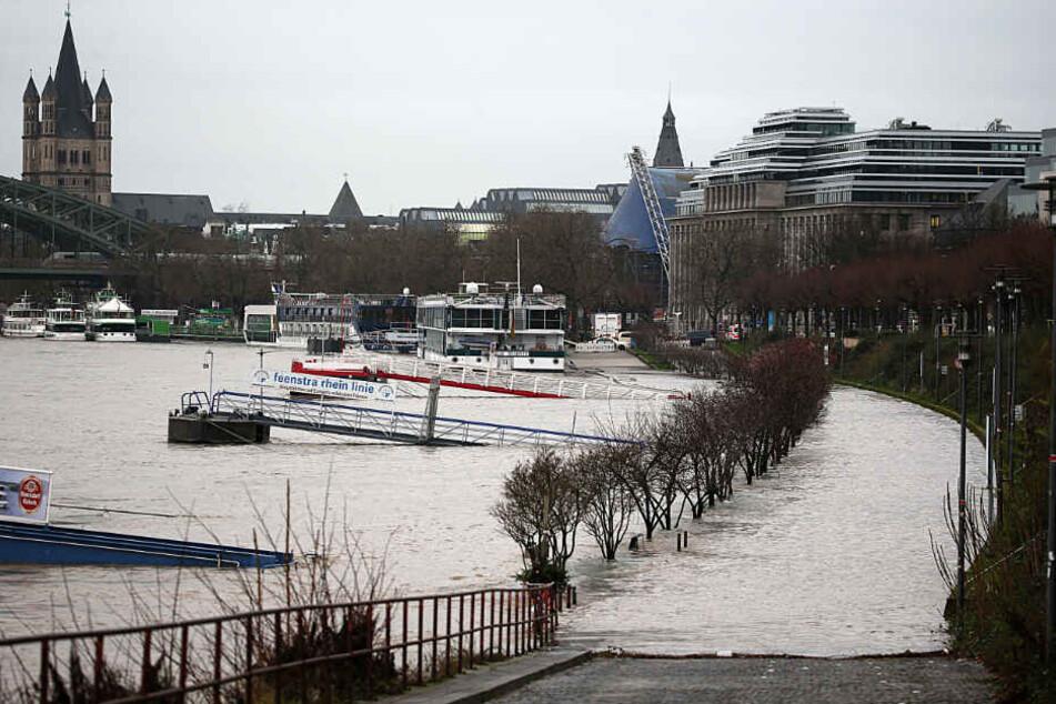 Köln droht wieder Überflutungen am Rheinufer.