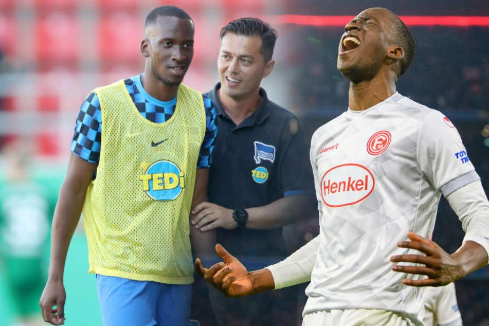 Dodi Lukebakio konnte gegen Bayern drei Tore erzielen.