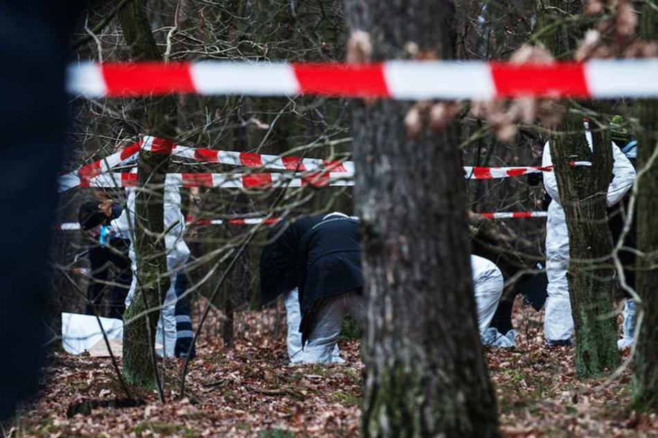 In einem Waldstück in Reinickendorf wurde eine Frau getötet (Symbolbild).